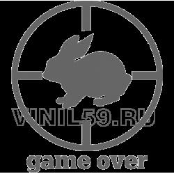 5166. Игра окончена, GAME OVER