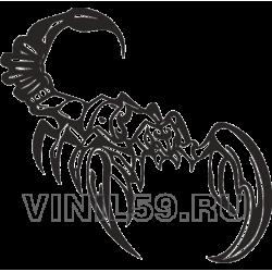 5246. Скорпион