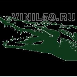 5253. Крокодил