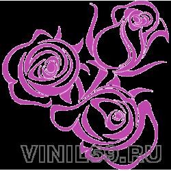 5258. Розы