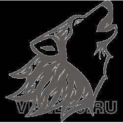 5327. Волк