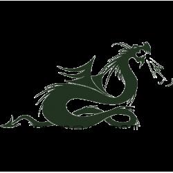 5344. Дракон