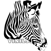 5350. Голова зебры