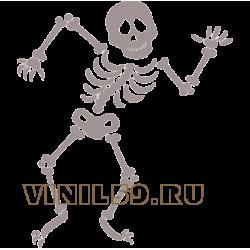 5417. Скелет