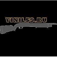 5431. Ружье