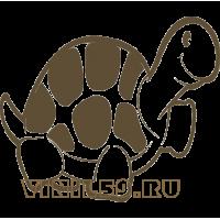 5502. Черепаха