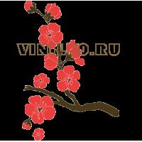5516. Цветущая ветка сакуры