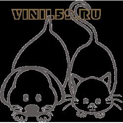 5679. Пес и кот