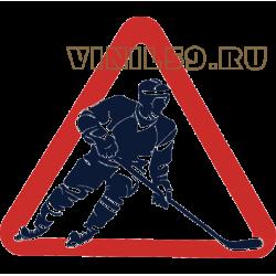 5773. Знак  Хоккеист