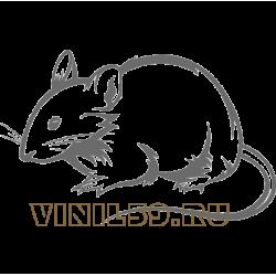 5828. Мышь