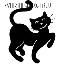 5999. Кот