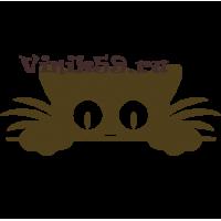 6046. Выглядывающий Кот