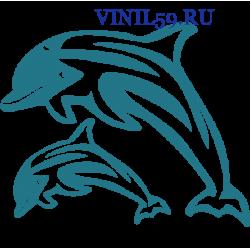 6189. Дельфины