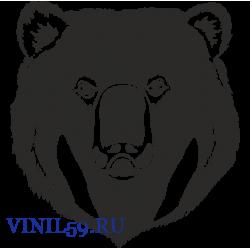 6261. Медведь