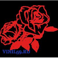 6320. Розы