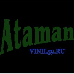 6403. Атаман