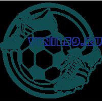6544. Футбольный логотип