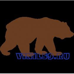 6563. Медведь