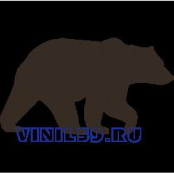 6564. Медведь