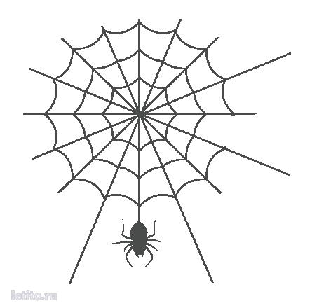 Паук на паутине - интерьерные