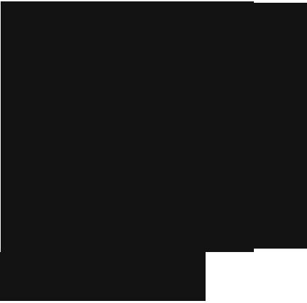 Фото силуэт котов